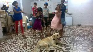 The kids put up a dance performance!